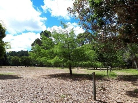 Olive Hill Farm Campground, Margaret River