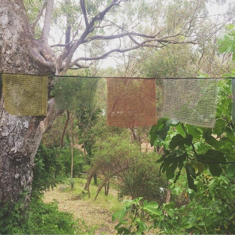 Kookaburra Creek Carriage Retreat