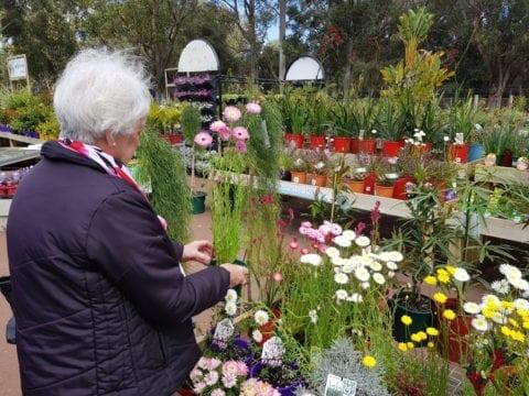 Waldeck's Garden Centre Kingsley