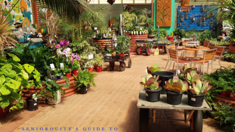 The Best Garden Centres in Perth